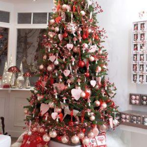 Santa Suit Image