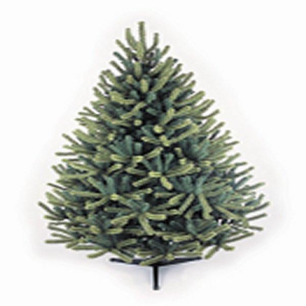 6ft Scandinavian Pine Artificial Christmas Tree