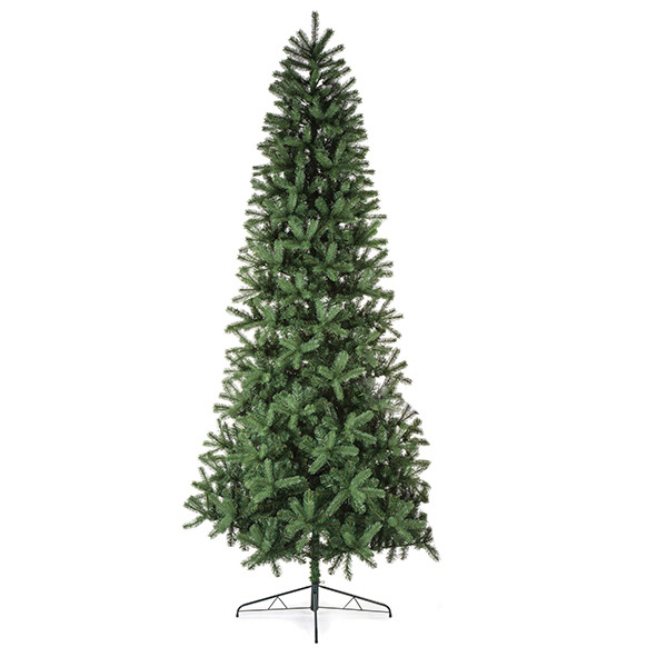 Mountain Spruce Display Tree - 3m (10ft)