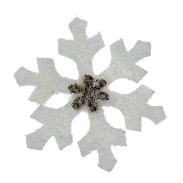 Hanging Spiky Snowflake Decoration With Pine Cones - 20cm