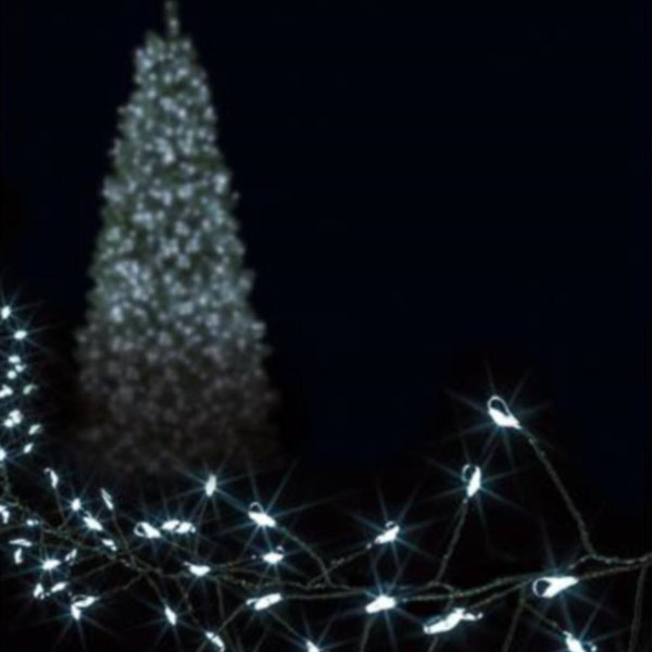 Premier 10m length of 500 White Indoor & Outdoor Multi Action Micro LED Treebright Fairy Lights With Timer On Green Wire