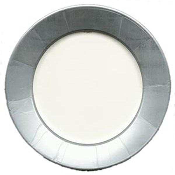 Silver Paper Dinner Plates