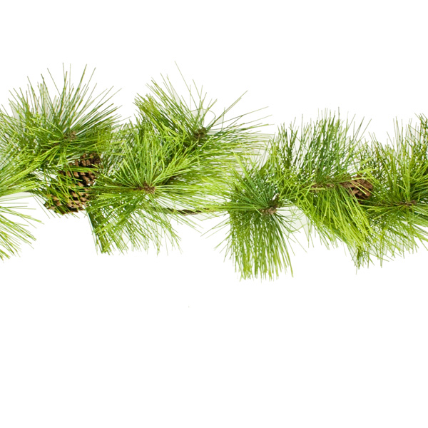 Chunky Outdoor Green Garland With Pinecones - 1.8m