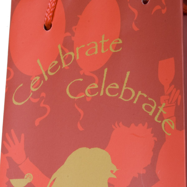 Birthday Party Bottle Bag - Celebrate