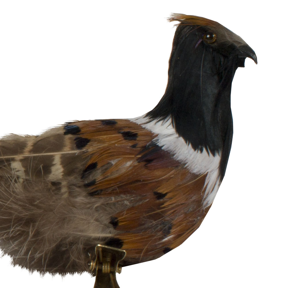 Pheasant With Feather Tail On Clip - 38cm