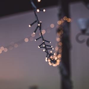 Christmas Lights - Mains Operated