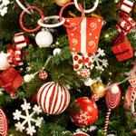 Santa Suit Theme Contents