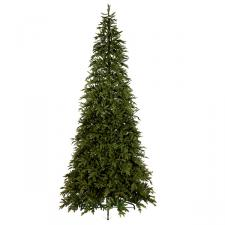 Canyon Pine Display Tree - 4m (13ft)