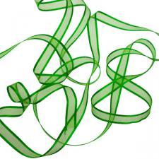 Apple Green Organza Satin Edge Ribbon - 10mm X 50m