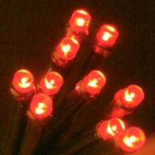 Noma 11.44m length of 144 Red Indoor And Outdoor Multi Function Super Vibrant LED Fairy Lights. Green Cable