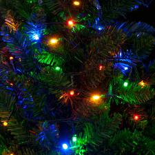 Premier 9.9m Length Of 100 Outdoor Multicoloured Battery Operated Multiaction LED Fairy Lights With Timer Green Cable