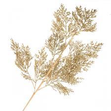 Gold Glitter Fern Spray - 70cm