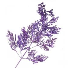 Purple Glitter Fern Spray - 70cm