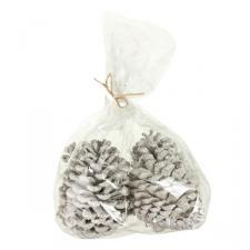 White Sparkle Pine Cones - 10cm