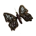 Eastern Promise Brown and Pearl 12.5cm Butterfly