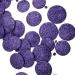 Purple Glitter Disc Garland - 180cm